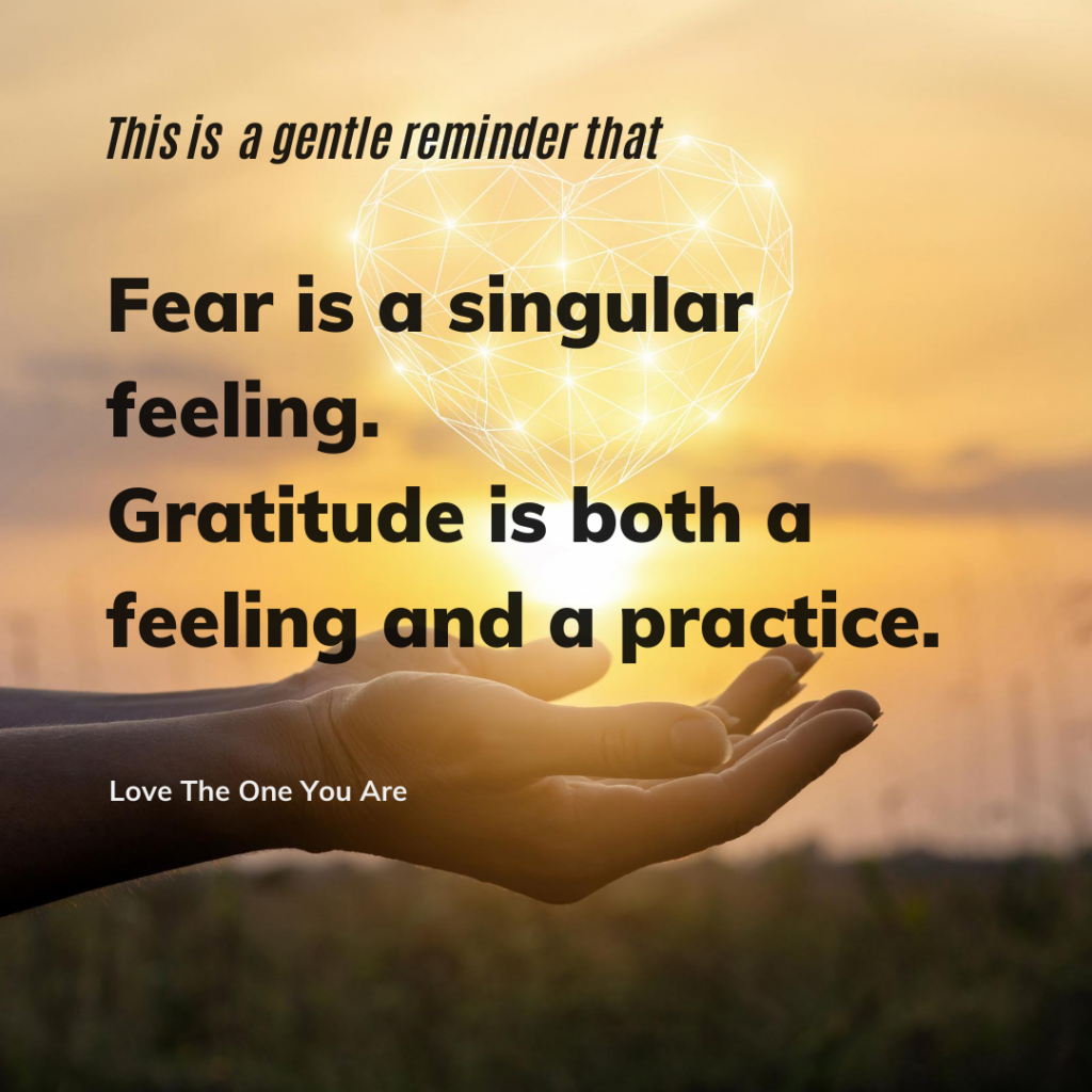 "hands holding light words read ""fear is a singular feeling, groatitude is both a feeling and a practice"""